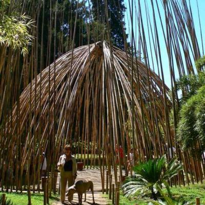 Arboretums, jardins, parcs