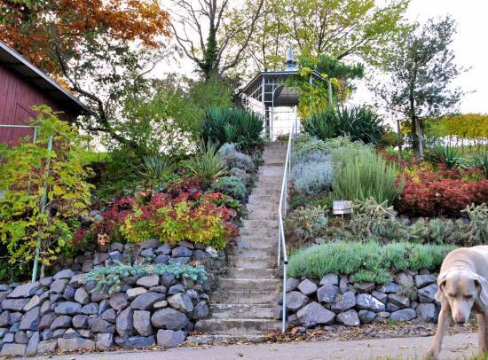 Un jardin botanique  jouxte la cave coopérative de Bickensohl