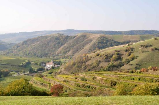 Le Badberg, réserve naturelle, domine le village d'Altvogtsburg...