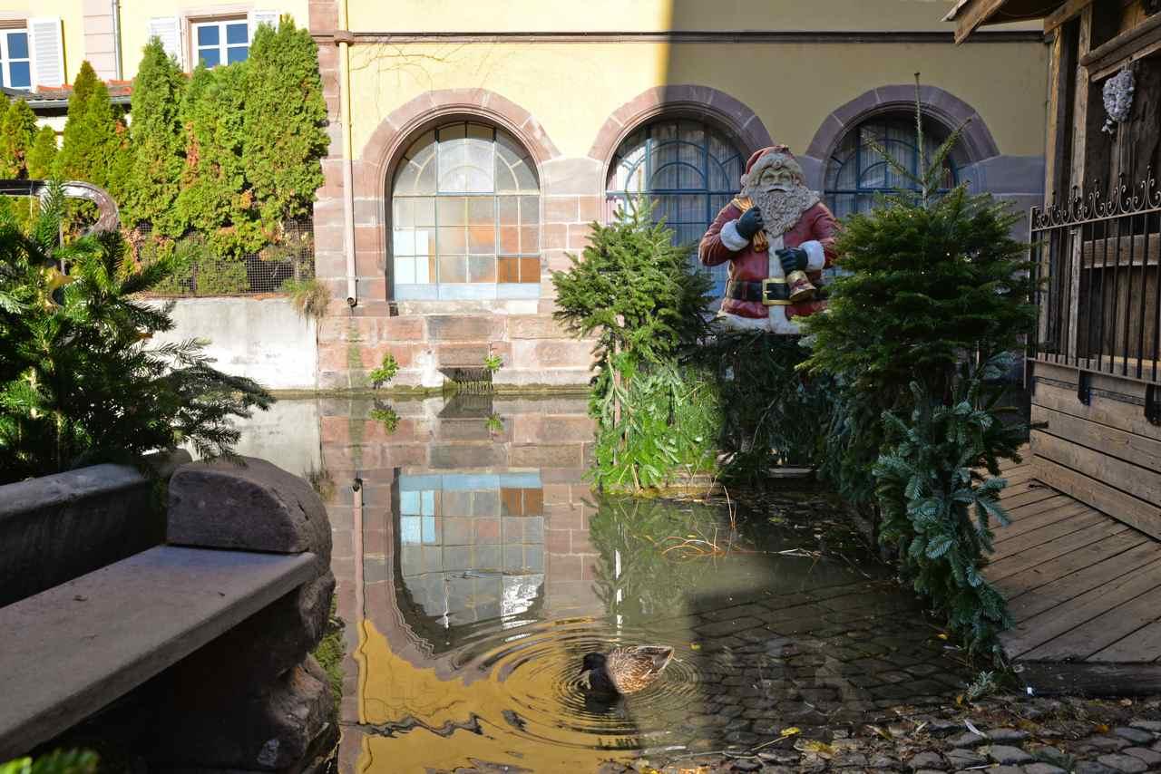 Le Père Noël a presque les pieds dans la Petite Venise (La Lauch)
