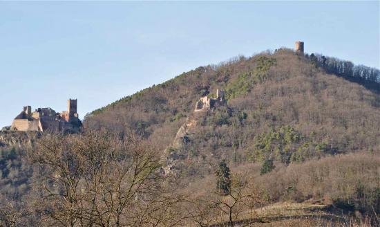 Les 3 châteaux : St Ulric, Giersberg, Haut Ribeaupierre. vus depuis Ribeauvillé