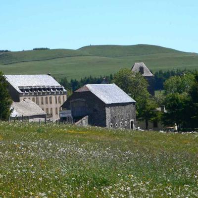 6° étape Nasbinals à Saint Chély d'Aubrac