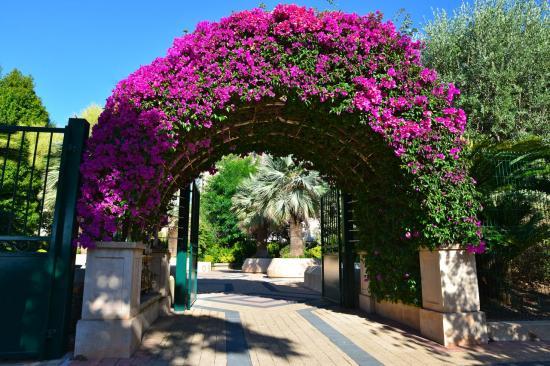 Une arche fleurie,  une des entrées du Jardin de l'Unesco